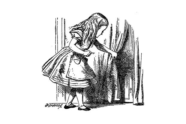 Alice Family Fun Day