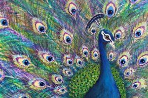 Online Exhibition: Sefton Artists
