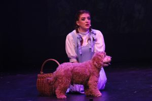 Weeee're off to see the Wizard!… The wonderful Wizard of Oz.